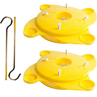 2x Yellow Hanging Butterfly Feeders | Attracts All Types Of Butterflies 2x Yellow Hanging Butterfly Feeders | Attracts All Types Of Butterflies 41CXX6scxML