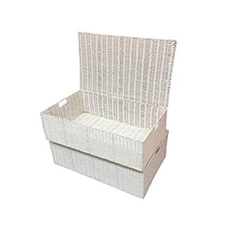 ARPAN Resin Woven Under Bed Storage Box, Chest Shelf Toy Clothes Basket With Lid - White (Set of 2 – Medium Baskets)