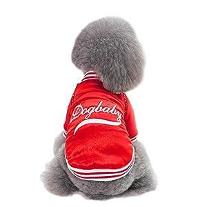 ShuoBeiter Pet Costumes Automne Hiver Chiens Vêtements de Style coréen Vêtements pour Chiens Manteau de Baseball Chiot Cat Outfit Doggie Chandail d'hiver Dogs Costume