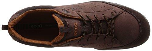 Ecco Sierra Ii, Chaussures Multisport Outdoor Homme Marron (Mocha/Mocha/Dried Tobacco)