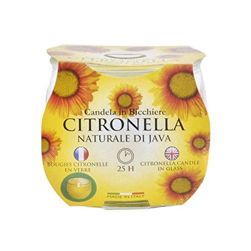 neuen Preise Citronella Garten Kerze in einem Glas ca. 25hrs Brenndauer