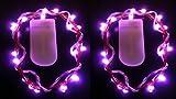 HLS 2 x 20 LED SUBMERSIBLE Batterie Fée cordes léger in rose