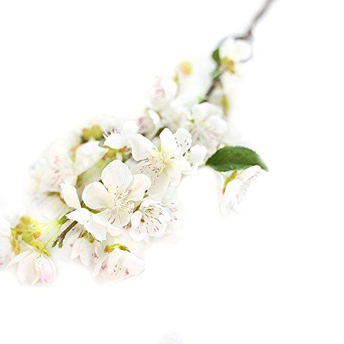 e Getrocknete Blumen,Unechte Blumen, Künstliche gefälschte Blumen Blatt Kirschblüten Blumen Hochzeit Bouquet Party Decor, Weihnachten Halloween (Weiß) ()