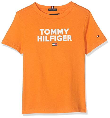 Tommy Hilfiger Jungen Logo Tee S/S T-Shirt, Russet Orange 800, 164 (Herstellergröße:14)