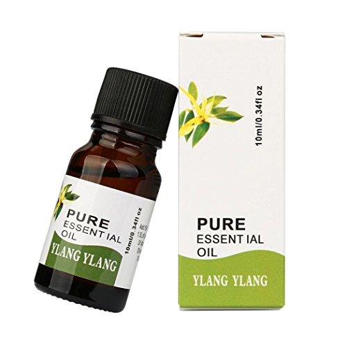 4 Unzen Kerze (Lanspo Hautpflege Ätherische Öle 10ml 100% reine natürliche ätherische Öle Aromatherapie Duft Hautpflege Verschiedene Aroma Tee, Rosmarin, Eukalyptus, Cananga, Zitronengras (E))