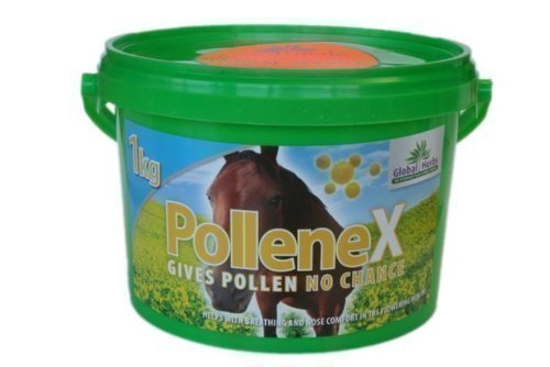Global Herbs - Integratore Alimentare per Cavalli PolleneX Airways 1kg