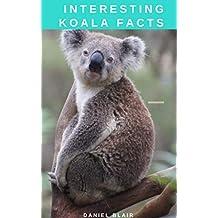 Interesting Koala Facts (The Animal Kids' Books) (English Edition)