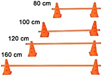 agility sport pour chiens - haie de coordination, 23 cm, jalon: 80 cm, orange - 2x MZK23o 1x 80o