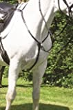 Hans Melzer Horse Equipment Vorderzeug Bad Harzburg, braun/messing, Vollblut/Warmblut