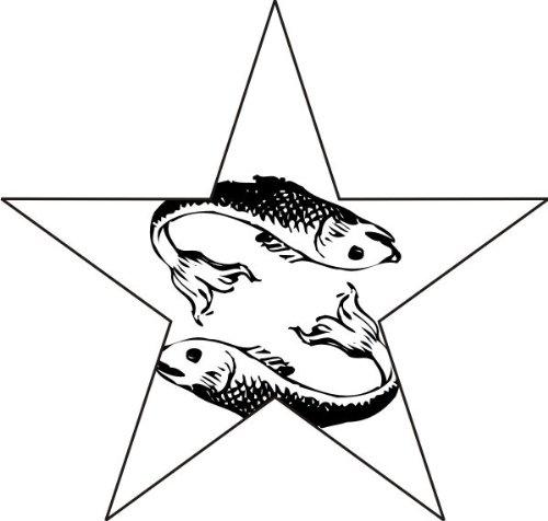 T-Shirt E1056 Schönes T-Shirt mit farbigem Brustaufdruck - Logo / Grafik - Comic Design - zwei Fische im Stern / Sternzeichen Weiß
