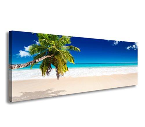 Visario 120 x 40 cm Bild tropischer Strand mit Palme 5731