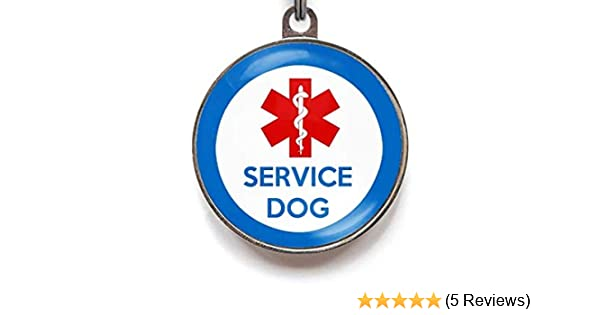 "Service ESA PTSD PT21 Therapy Dog Key /"" Collar Tag For ADA FHact Animals Pet"