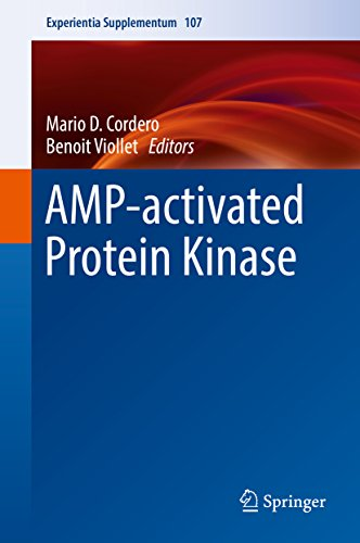 AMP-activated Protein Kinase (Experientia Supplementum Book 107) (English Edition) - Switch Activator