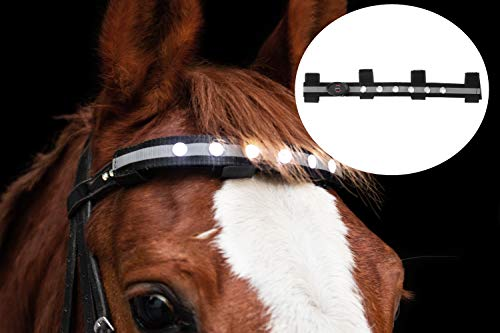 Panama Reitsport LED Licht Stirnriemen Gurt für Pferde, für mehr Sicherheit (Schwarz)