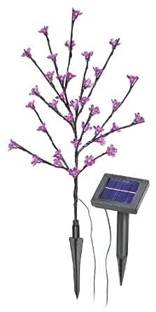 Esotec SOA Arbuste solaire muni de 36 fleurs roses