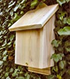 The Chavenage Bat Box - wildlife lovers eco gift