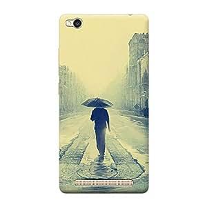 Ebby Premium 3d Desinger Printed Back Case Cover For Xiaomi Redmi 3s (Premium Desinger Case)