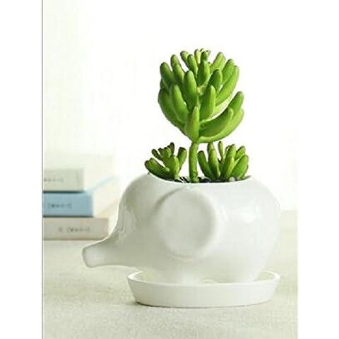 somarke animale in ceramica vaso bianco in porcellana Succulent Plants Vaso da fiori Casa Decro giardino vaso Desktop Mini Ornamenti