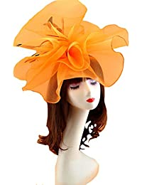 2c3798b4 dressfan Irregular Mesh Feather Fascinator Hats Face Veil Hair Ornaments  for Party Wedding