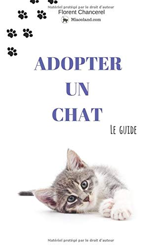 Adopter un chat: Le guide