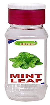 Ridies Mint Leaf Flakes (Pudina),25g (Pack of 3)