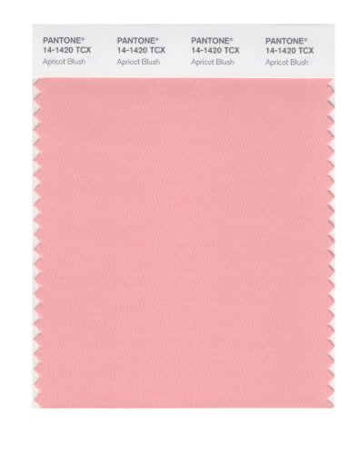 Pantone Smart Farbe Swatch Karte Apricot Blush
