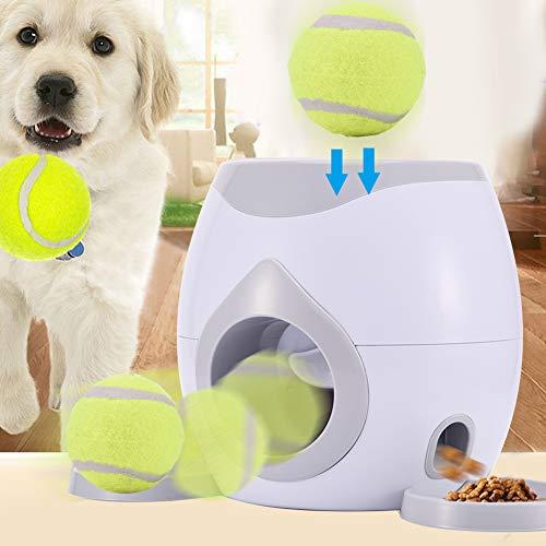 Juguete lanzador pelota tenis mascotas, alimentador