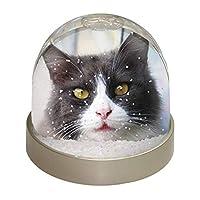 Advanta Group Pretty Black and White Cat Snow Dome Globe Waterball Gift, Multi-Colour, 9.2 x 9.2 x 8 cm