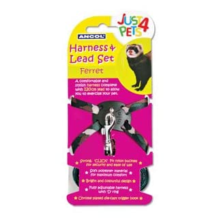 Ancol Harness & Lead Set for Ferrets 6
