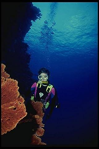 156045 Scuba Diver And Pacific Red Sea Fan A4 Photo Poster Print 10x8