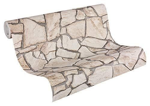 A.S. Création Vliestapete Best of Wood`n Stone Tapete in Naturstein Optik 10,05 m x 0,53 m beige braun grau Made in Germany 927323 9273-23
