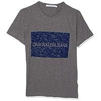 Calvin Klein T-Shirt Hombre M Grey J30J312163-408-TM