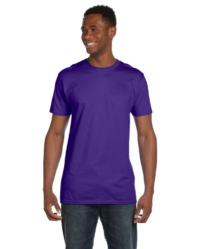 Hanes 4980 Mens Nano T-Shirt 1 Purple + 1 Vintage Denim
