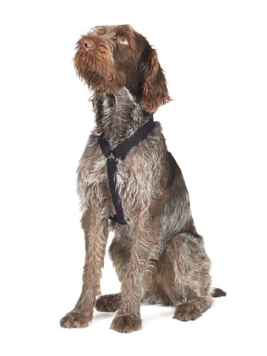 Ancol Nylon Dog Harness No Pull Large Size 6-8 Black