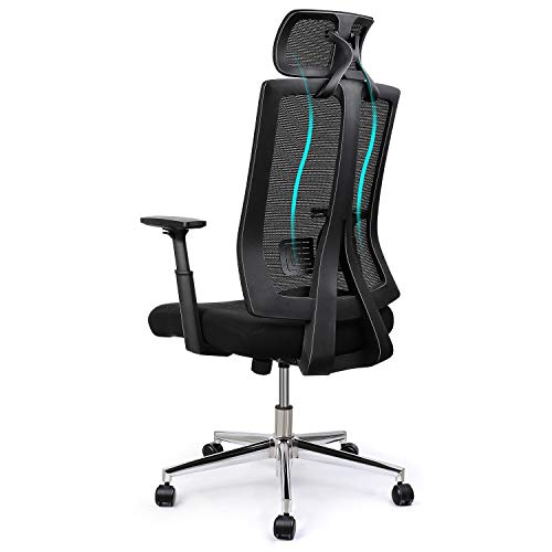 INTEY Bürostuhl, Chefsessel, ergonomischer Schreibtischstuhl, höhenverstellbarer Computerstuhl mit atmungsaktivem Mesh, Drehstuhl mit Lendenstütze und Kopfstütze, Belastbar 125kg