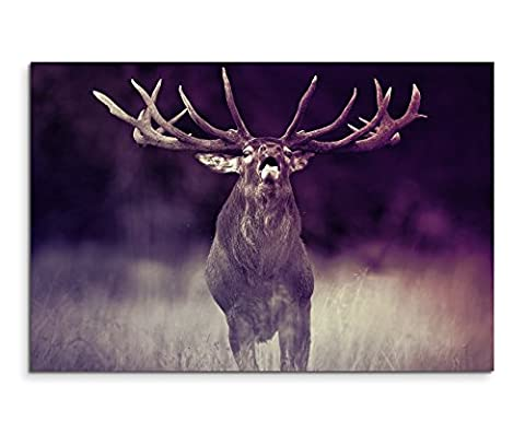 120x 80cm XXL énormes Photos montée avec cadre en bois véritable Mauve Animaux Cerf Forêt Dyrehave
