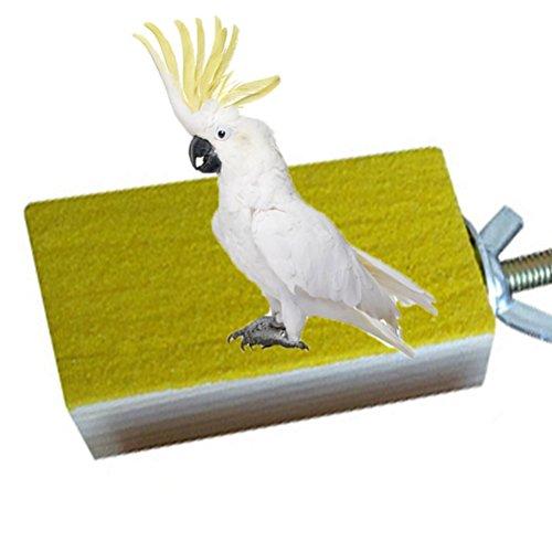 Sitzstange aus Holz Plattform Vogel Papagei Ara African Greys Wellensittiche Sittiche Nymphensittiche Sittiche Aras Unzertrennliche Finch Käfig Zubehör