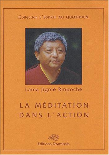 La méditation dans l'action par Rimpotché Jigmé