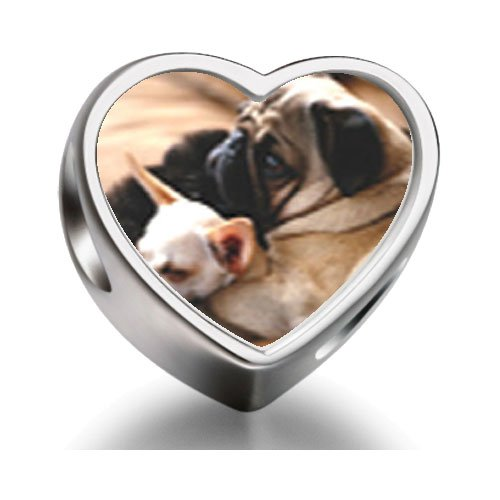 Rarelove Sterling Silver Puppy Pals Heart Photo Charm Beads