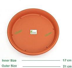 VGreen Garden Bottom Trays Set of 5 Pcs