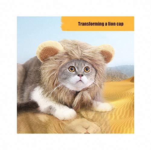 Ohren Welpen Kostüm - FZ FUTURE Halloween Kostüm für Katze Hund, Löwenmähne mit Ohren für Katzen, Süße Löwenkostüm, Verstellbar Hunde Perücke mit Ohren, für Halloween, Partys, Feste-Größe Passend,L