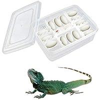 heresell 16 Unidades Caja de reproducción de Reptiles para Huevos de Reptiles, Lagarto, Escalada, para Mascotas Mayores de Edad, incubadora para incubadora de Huevos de Gecko, lagartijas, Serpiente
