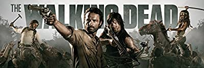 GB Eye LTD, The Walking Dead, Banner, Poster Porte, 53 x 158 cm