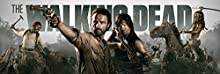 GB eye LTD, The Walking Dead, Banner, Poster Puerta, 53 x 158 cm