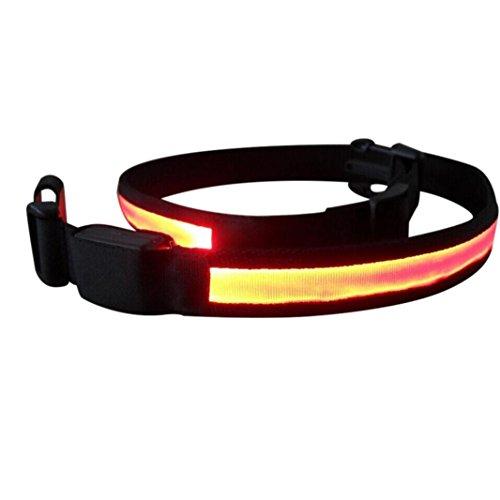 Streetwear Gürtel,Jaminy LED Laufgürtel Glühen Gürtel Reflektierende Schnalle Laufgürtel Hohe Sichtbarkeit (Orange) (Dakine-leder-gürtel)