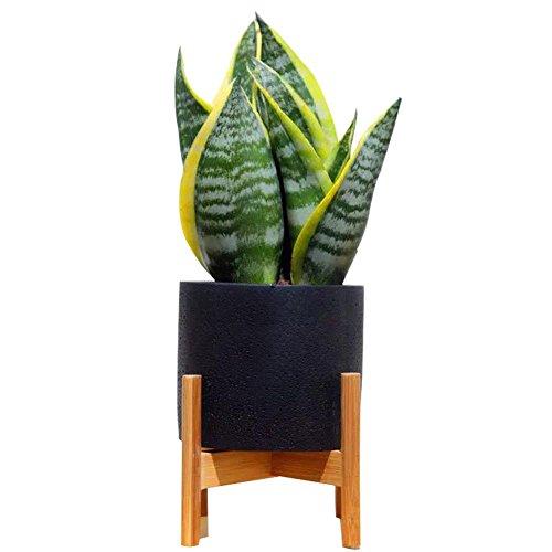 Flower Pot Stand The Best Amazon Price In Savemoney Es