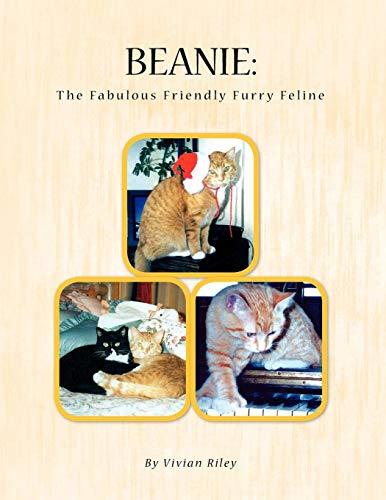Text Beanie (Beanie: The Cat)