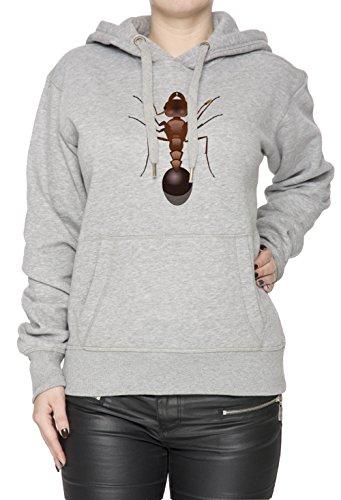 Fourmi Gris Coton Femme Sweat-shirt Sweat À Capuche Pull-over Grey Women's Sweatshirt Pullover Hoodie