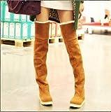 Phy Shoe Flache Schuhe mit Kniestiefeln, Herbst- und Winterschneestiefel, hohe Stiefel, Flache Knie, Stiefel, Gelegenheitsschüler, warm, grau, 40