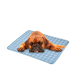 Biback Pet Cooling Pad Dog Cat Kitten Hound Puppy Summer Cooling Bed Mat For Kennels Crates Beds 41ChdKya4qL